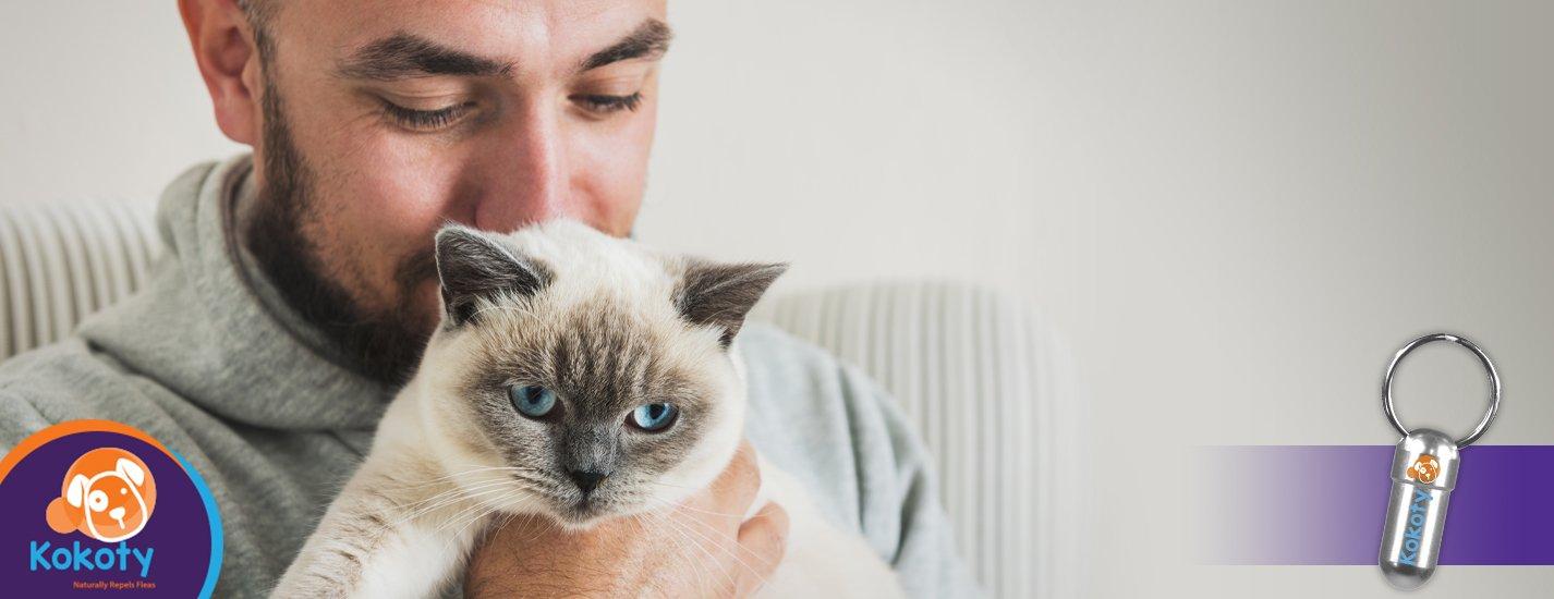 Descubre la verdad: ¿los gatitos nos manipulan con su ternura?